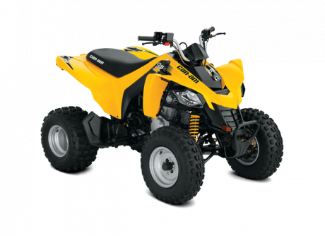 Can-Am DS 250 2019